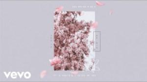 Shawn Mendes - Youth (Remix) ft. Khalid, Jessie Reyez